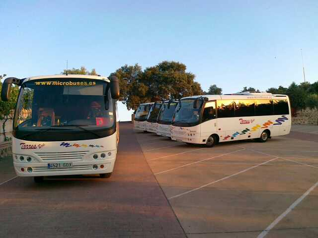 Reisen im Minibus Madrid