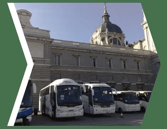 Bus Torres Bus